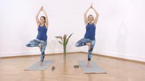 Yoga Anfänger Baumposition