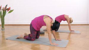 Yoga Anfänger Katzenbuckel